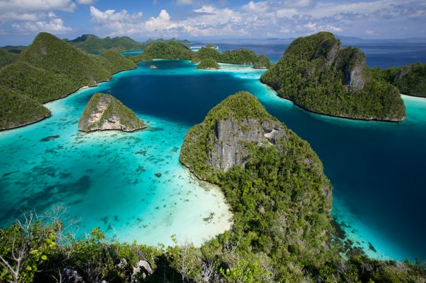 Jasa Pembuatan Website di Manokwari, Papua Barat